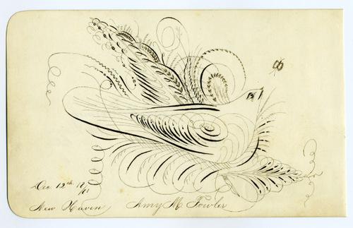 Birdscroll