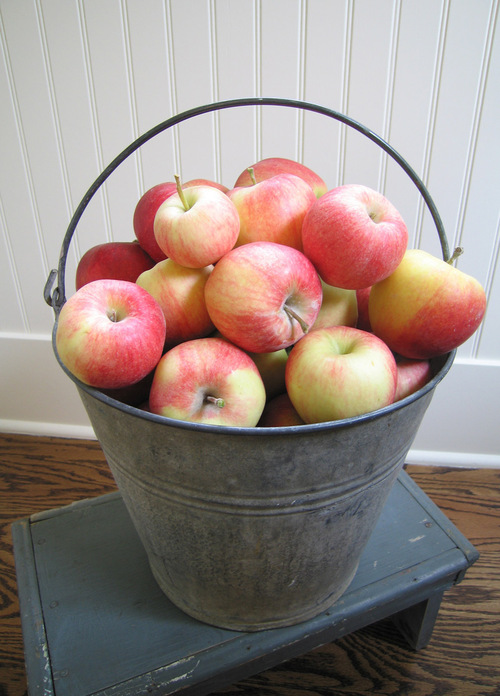 Applebucket
