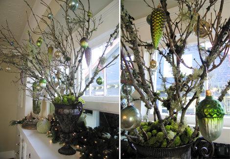 Treeorns
