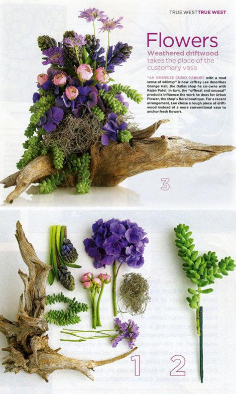 Succulentspring